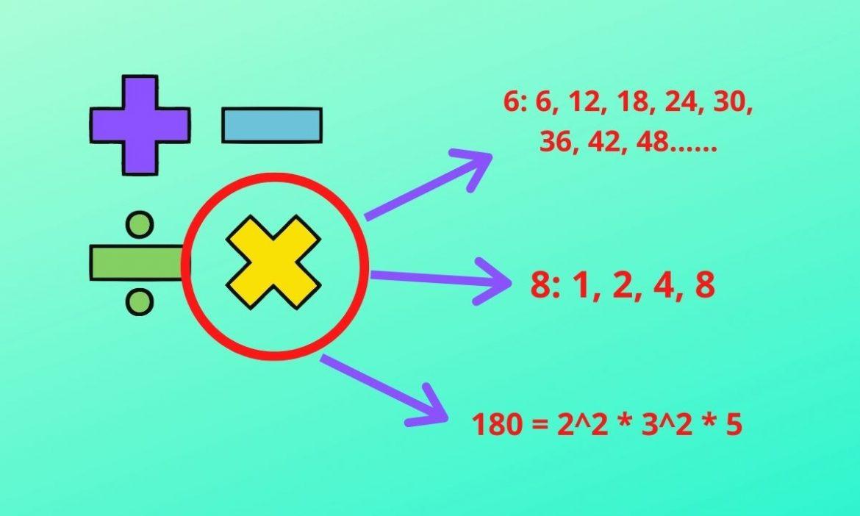 Multiples, factors, and factorizations